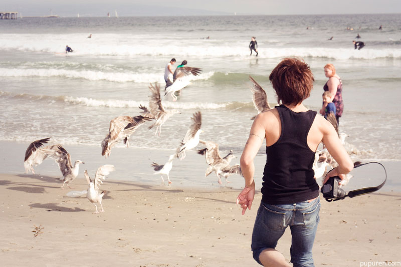 CY scaring seagulls at Venice beach, Los Angeles.