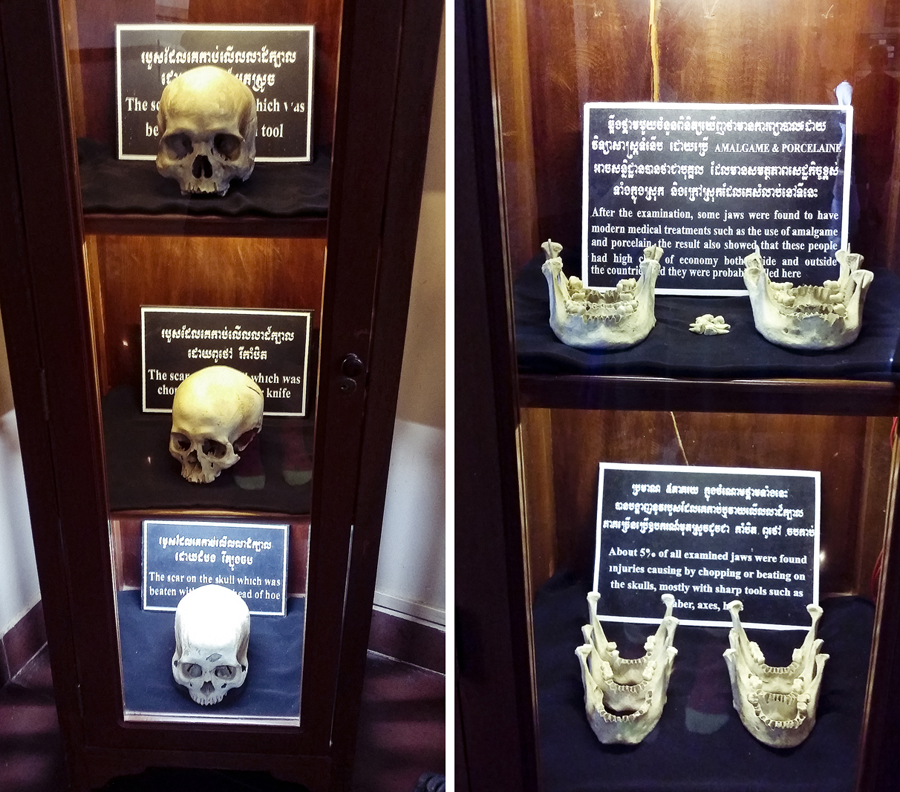 Exhibit of skulls of victims at the Choeung Ek Killing Fields Museum in Phnom Penh, Cambodia.