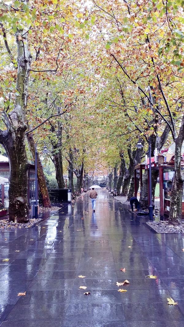 Jing'an park, Shanghai.