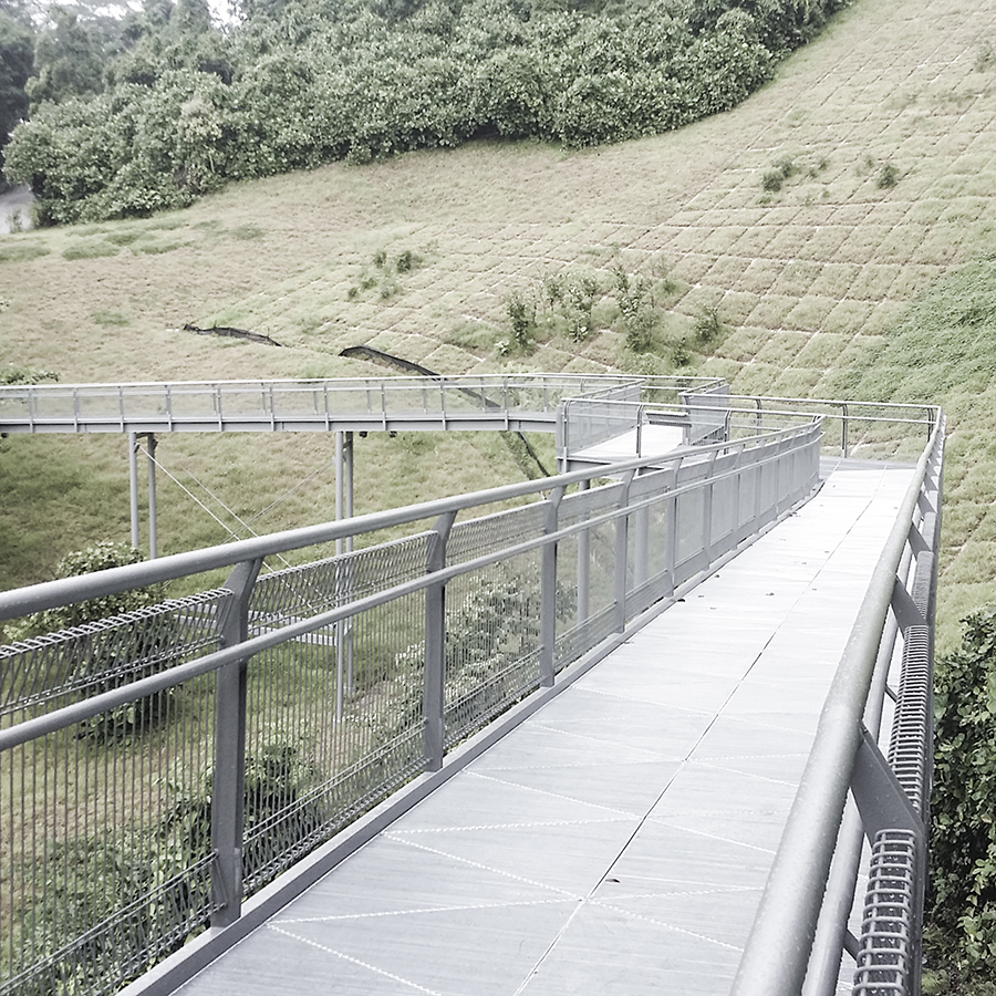 Forest Walk: Steel bridge along the Southern Ridges Trail in Singapore.