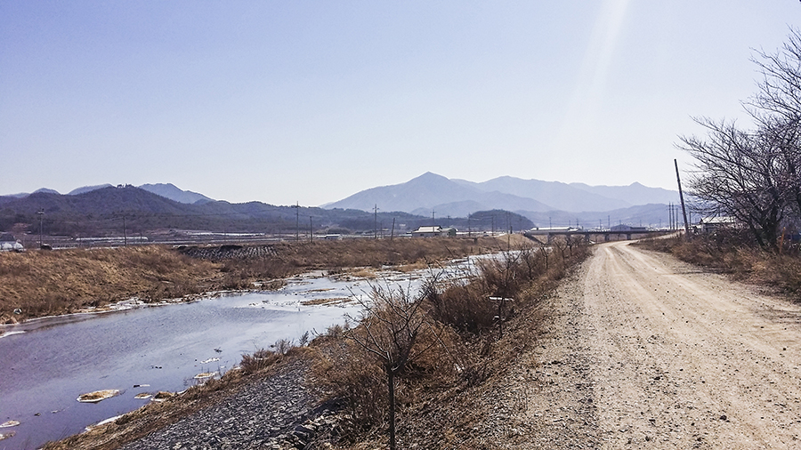 Scenic view along the road by the river in Sangju, South Korea.