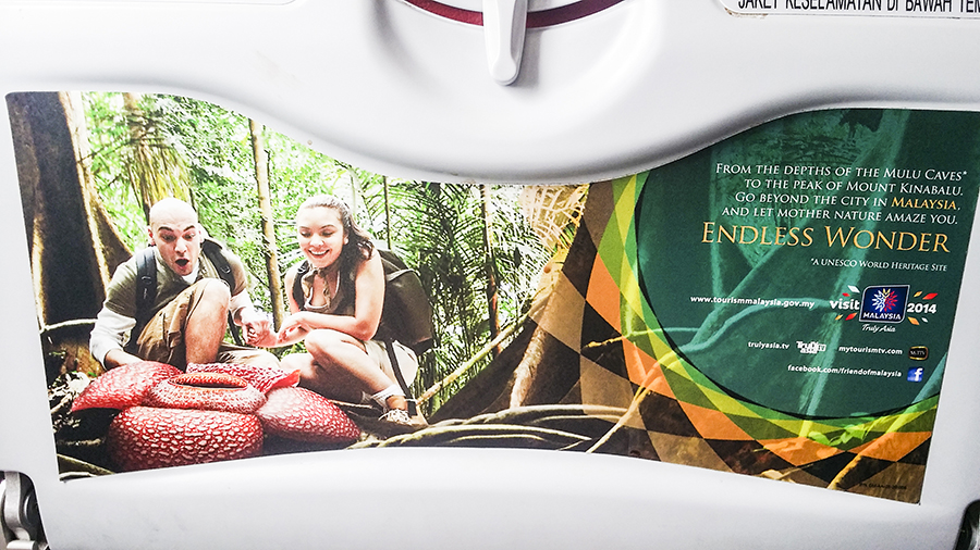 Visit Malaysia ad featuring two caucasians excited over a Rafflesia flower on the backseat of a plane.