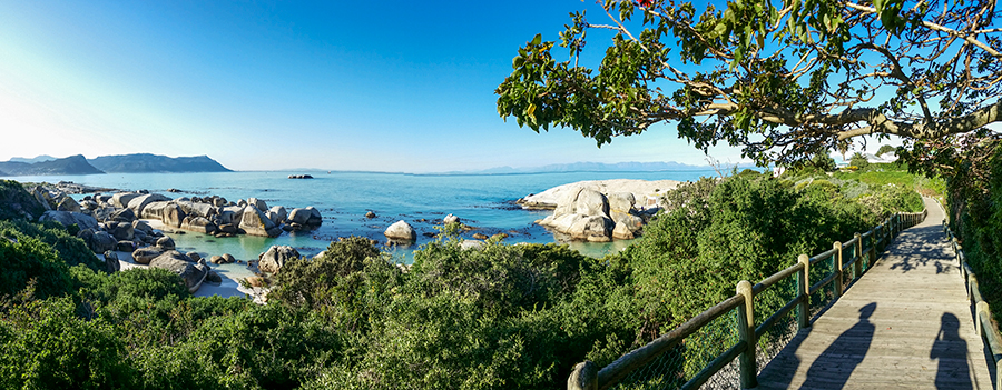 Panoramic view of Boulders Beach, Table Mountain National Park, Cape Town, South Africa.