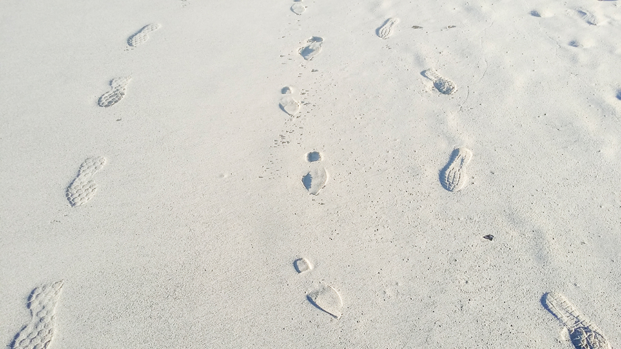 Footprints in the sand at Rocky Shores, Hout Bay, Cape Town, South Africa.