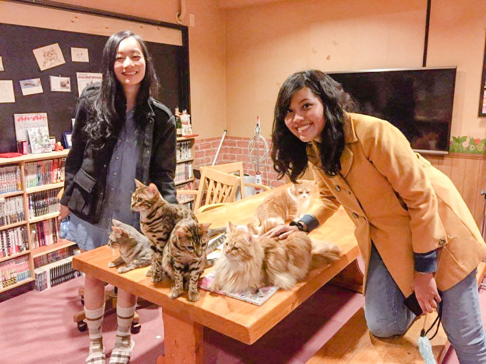 Ren & Shasha with cats on a table at Nyan Tsume, Osaka, Japan. Photo by Ruru.