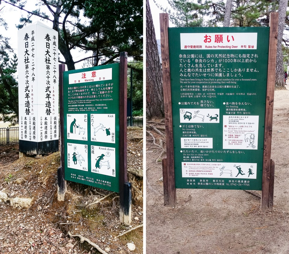 Signs at Nara Park warning of the dangers of getting too close to the deer in the park.