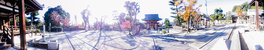 Panoramic view of shrine at Fushimi Inari, Kyoto Japan.