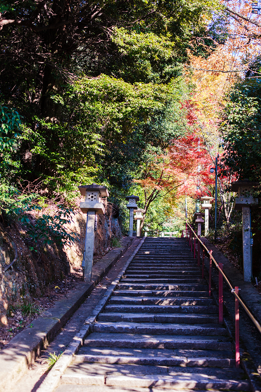 Stairs in autumn leaves at Fushimi Inari in Kyoto, Japan.