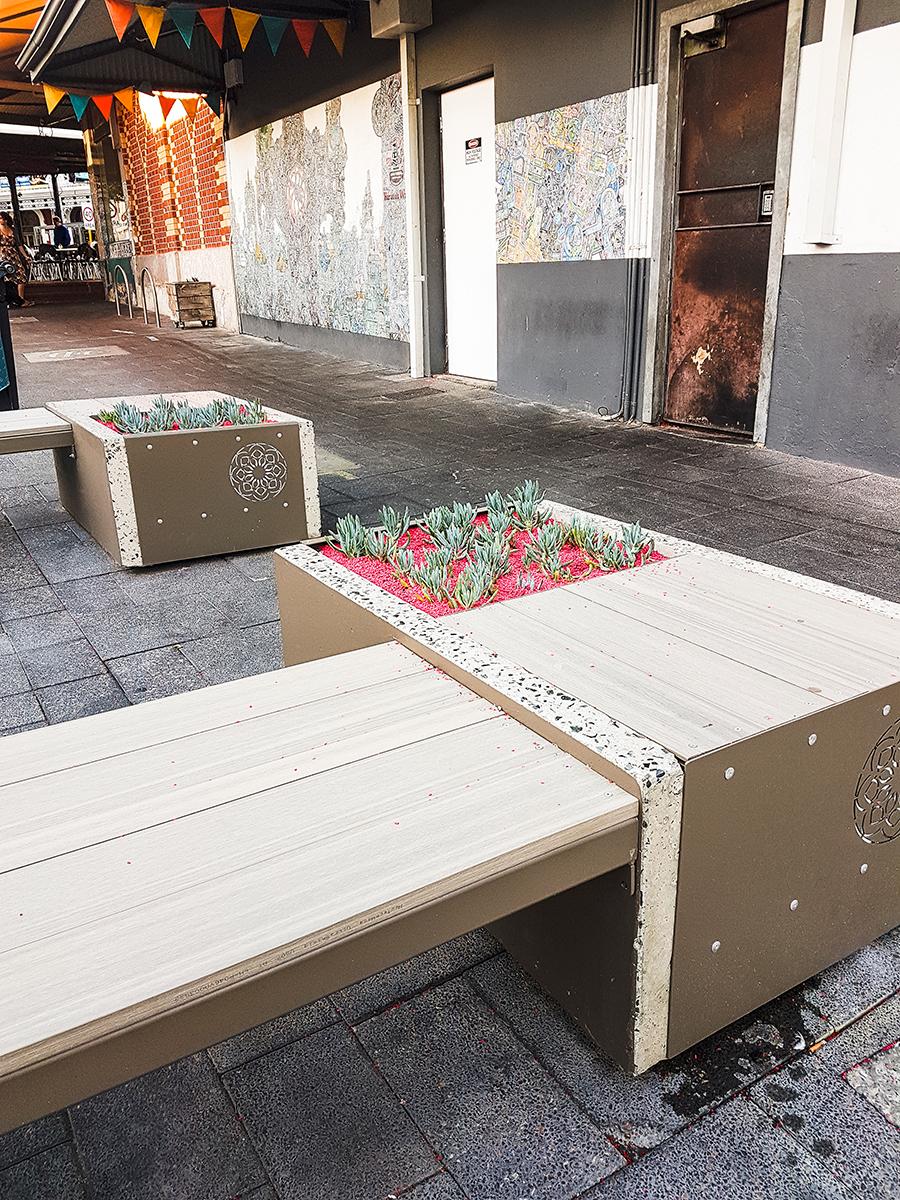 Succulents on public benches in Fremantle Perth Australia.