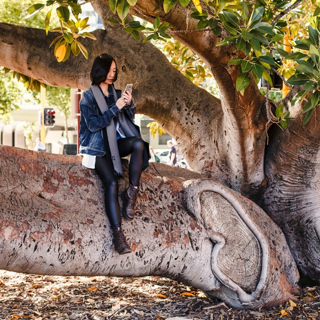 Climbing trees outfit in Perth Australia.