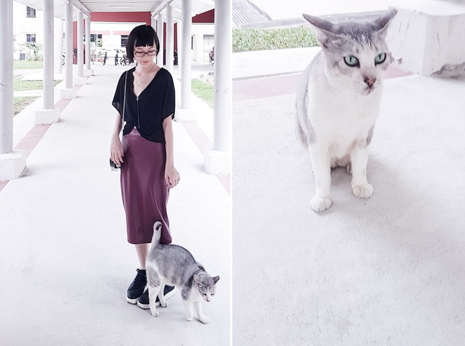 New neighbourhood cat and leatherette skirt ootd.