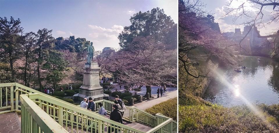 Chiyoda Park in spring: cherry blossom season.