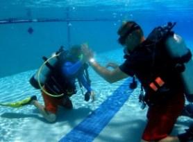 padi seal team member and instructor