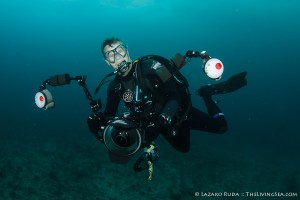Photographing Grouper