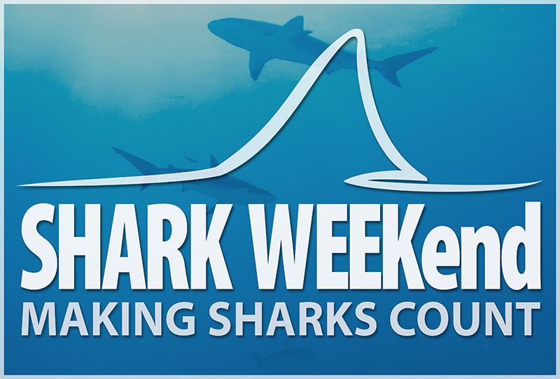 shark-weekend-poster