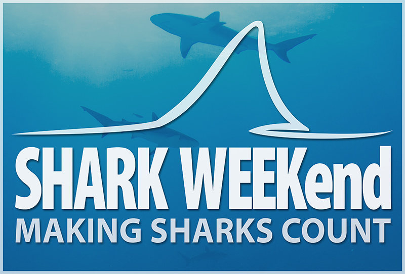 shark-weekend-poster