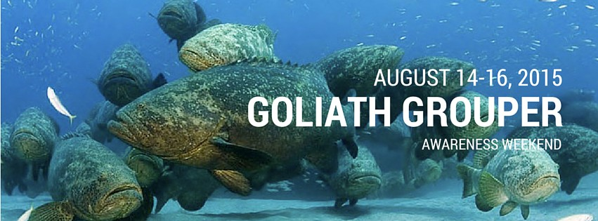 Goliath Grouper Awareness Weekend