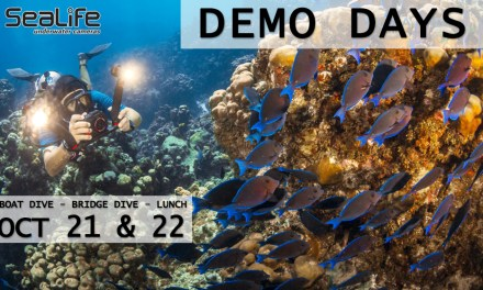 OCT 21 & 22: SEALIFE CAMERA DEMO