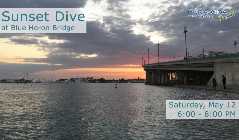 MAY 12: GUIDED SUNSET DIVE AT BLUE HERON BRIDGE