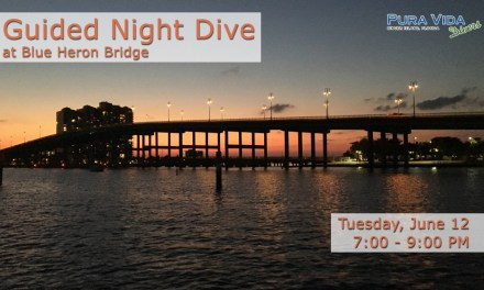 JUNE 12: GUIDED SUNSET DIVE AT BLUE HERON BRIDGE