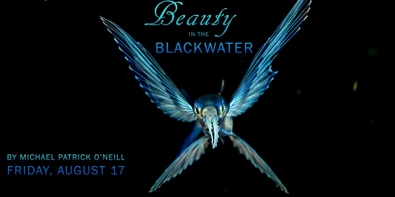 SOCIAL NIGHT: BEAUTY IN THE BLACKWATER