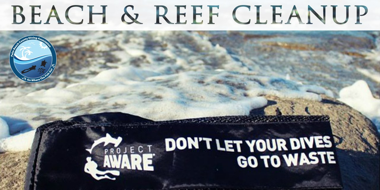BEACH & REEF CLEANUP