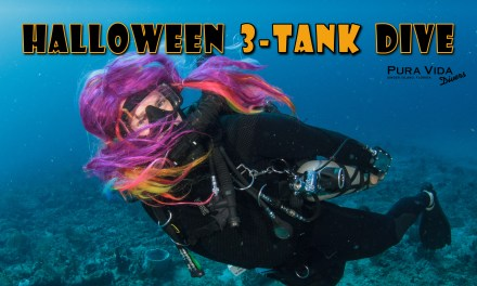OCT 28: HALLLOWEEN 3-TANK COSTUME DIVE