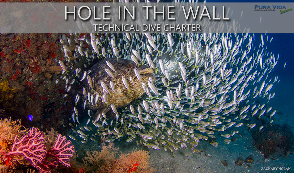 HOLE IN THE WALL TEC CHARTERS