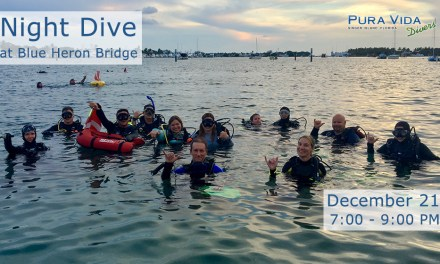 DEC 21:  NIGHT DIVE AT BLUE HERON BRIDGE