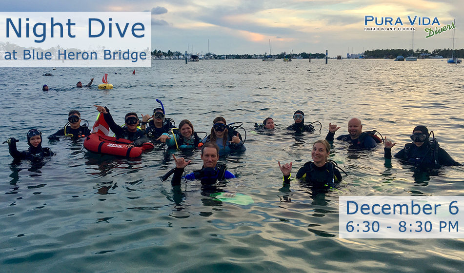 DEC 6: NIGHT DIVE AT BLUE HERON BRIDGE