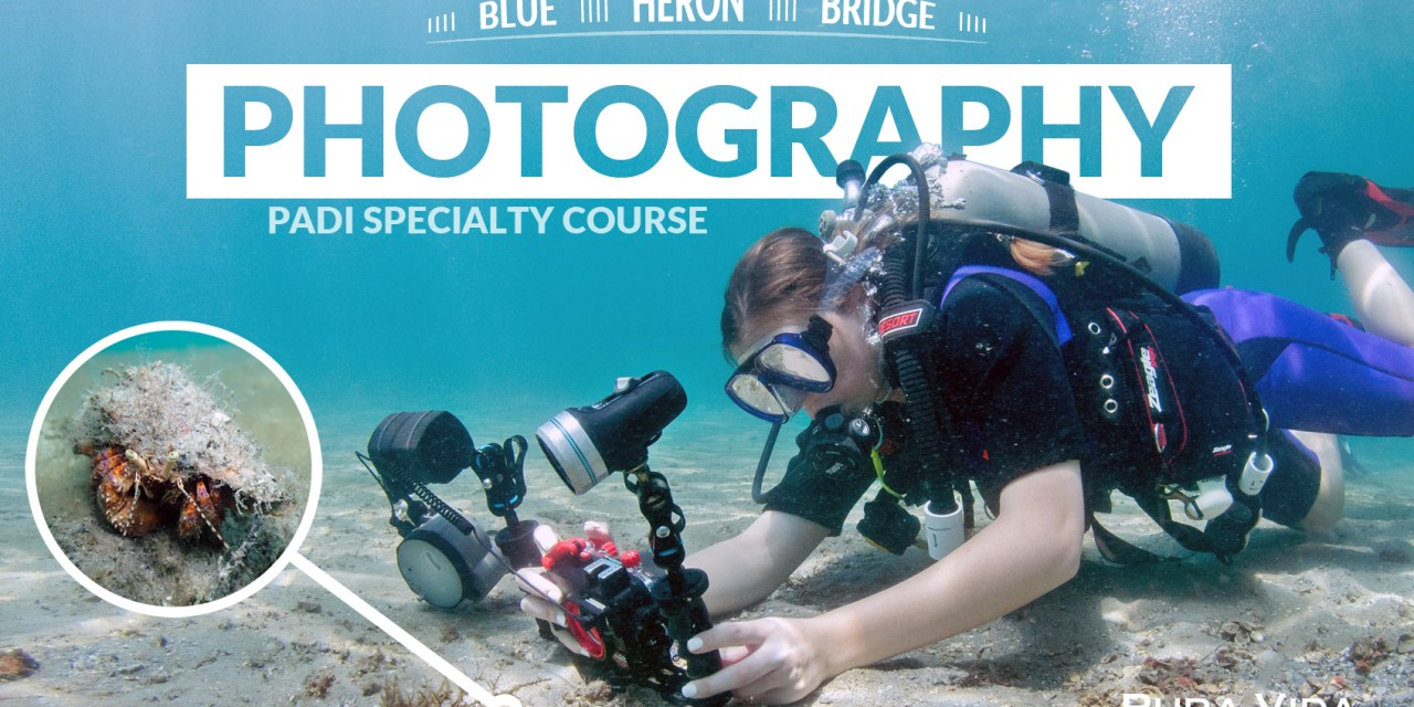 PADI UNDERWATER PHOTOGRAPHY SPECIALTY