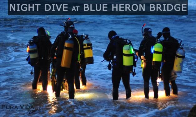 JUNE GUIDED NIGHT DIVE AT BLUE HERON BRIDGE