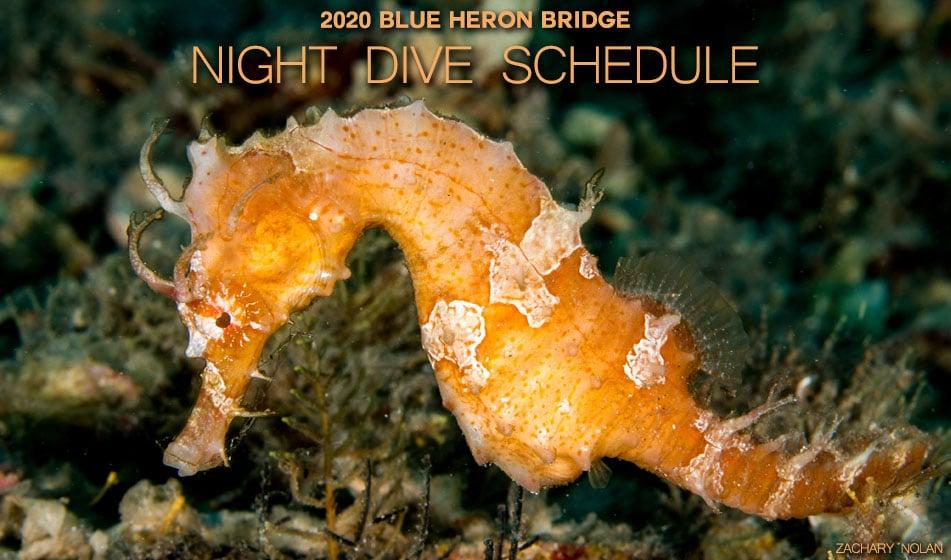 2020 BLUE HERON BRIDGE NIGHT DIVE SCHEDULE