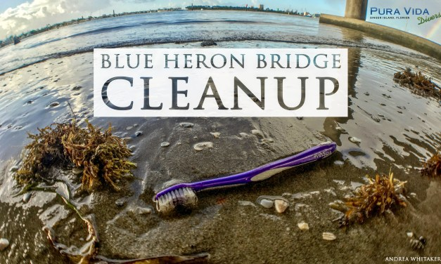 BEACH CLEANUP AT BLUE HERON BRIDGE
