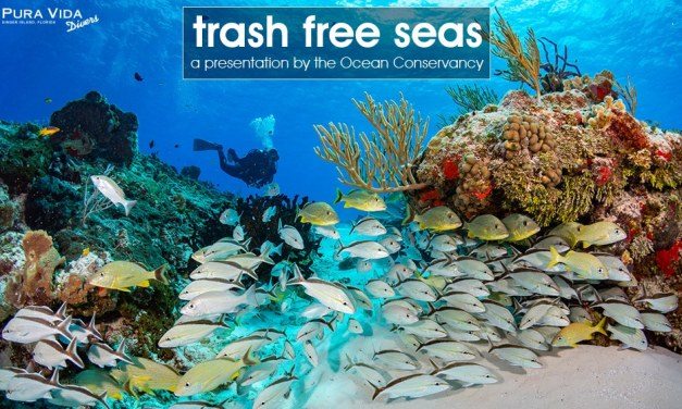 TRASH FREE SEAS