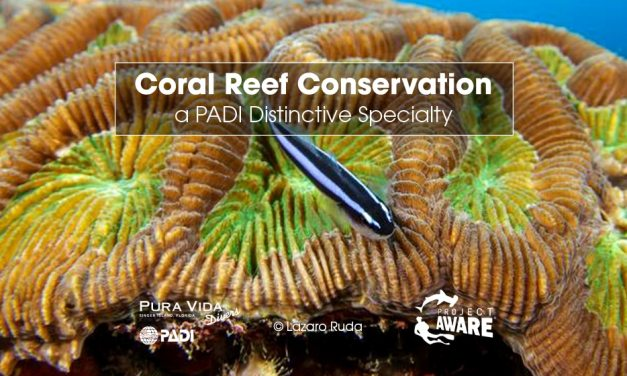 CORAL REEF CONSERVATION CLASS