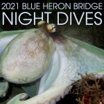 2021 BLUE HERON BRIDGE NIGHT DIVES