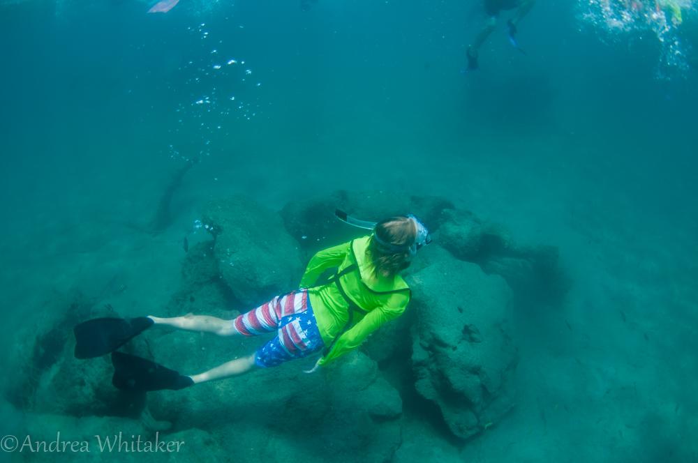 Eco Snorkel Camp - Duck Dive