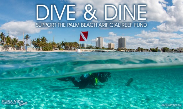 DIVE & DINE: SUPPORT PBC ARTIFICIAL REEFS