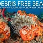 DEBRIS FREE SEAS: REEF CLEANUP