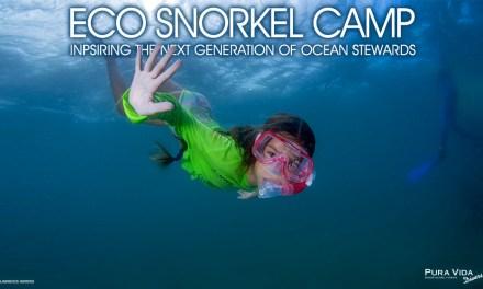 BECOME OCEAN STEWARDS AT ECO SNORKEL CAMP