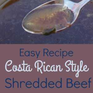 Costa Rican-Style Shredded Beef Recipe