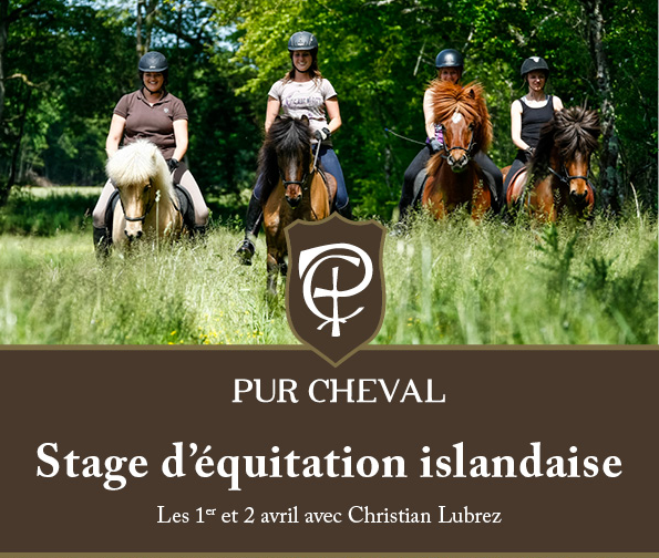 Pur Cheval – Stage Christian Lubrez