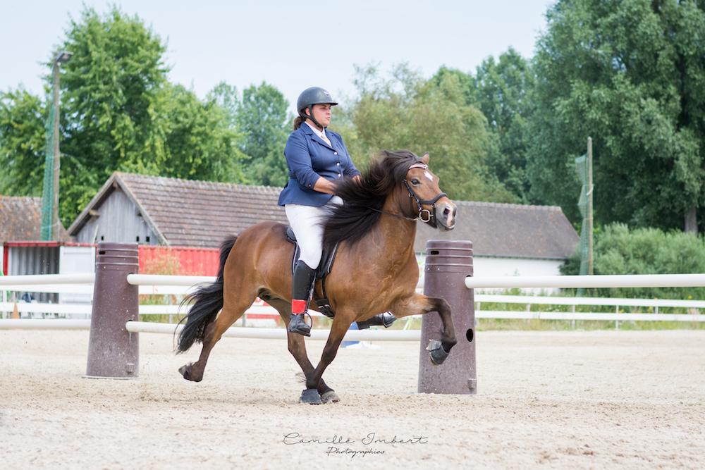Hrísey frá Langholtsparti au tölt rapide aux Championnats de France d'équitation islandaise