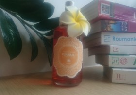 Partez en voyage avec les produits PURA Bali