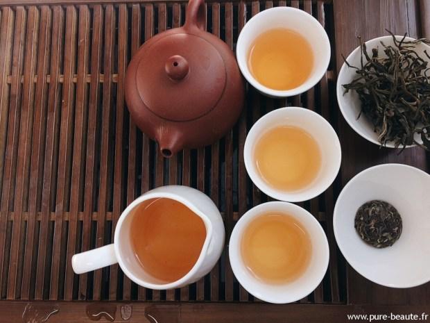 Le thé Pu'er cultivé par Cha Ling