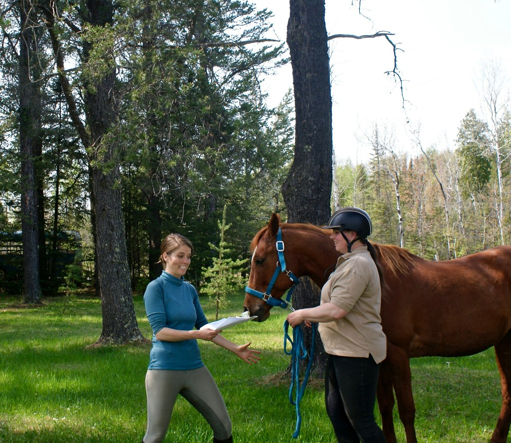 kekai-duluth-event-planning-horse-therapy