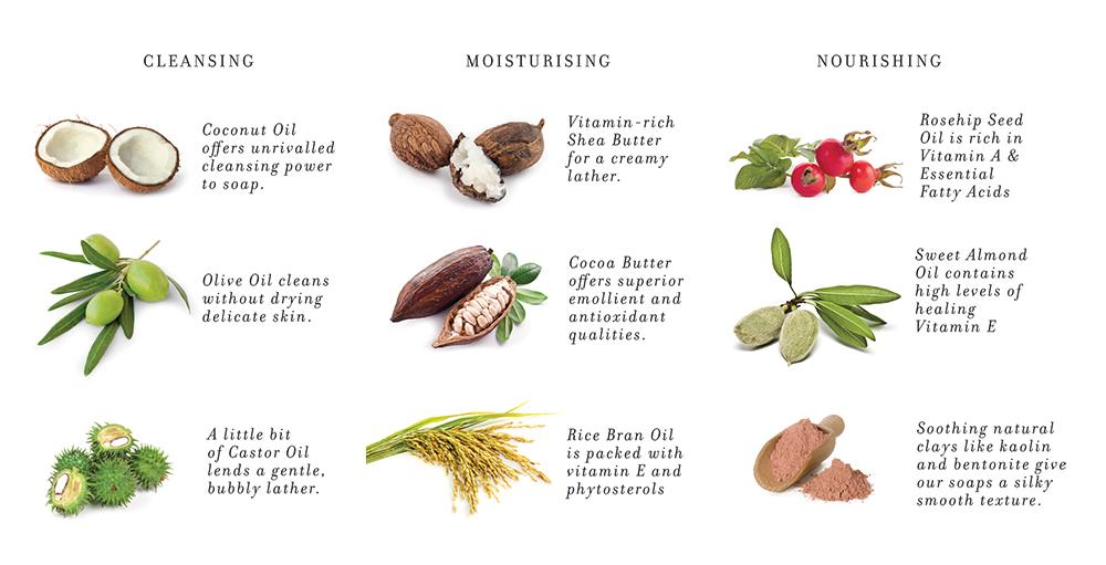 plant oils and butters