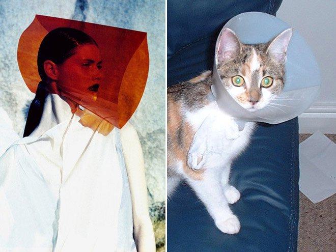 chats mannequins 15