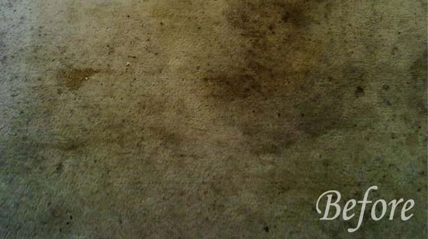 Carpet Cleaning in Allen TX